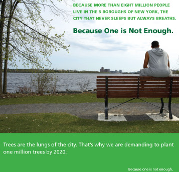 Million Trees photo0
